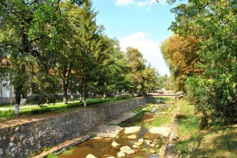 Covasna Brook