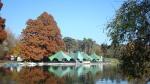 Romanescu Park in Craiova - the lake