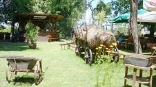 Ostrovo Restaurant in St Naum (3)